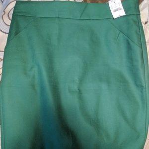 NWT Gorgeous spring green pencil skirt